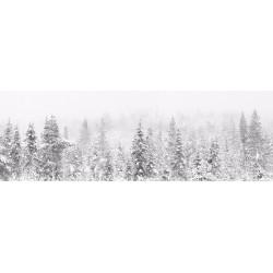 Utuinen metsä - HD -...