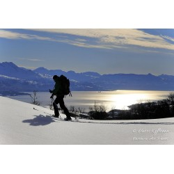 Mountain skier - Canvas print
