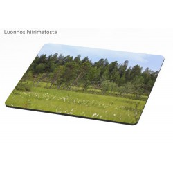 Treeline on svamp - Mousepad / Calendar
