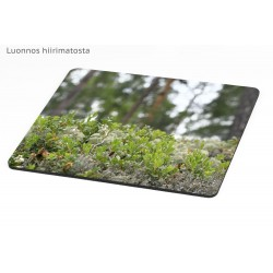 Forest miniature - Mousepad...