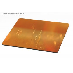 Golden hays - Mousepad /...