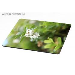 Puolukan kukat - Hiirimatto / kalenteri