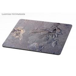 Intriguing ice formation - Mousepad / Calendar