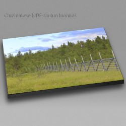 Old Snow Fence - Chromaluxe...