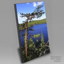 Tervajärven kesävärit - Chromaluxe taulu