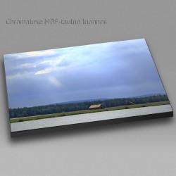 Auringonsäteet Suvannossa - Chromaluxe taulu