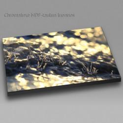 Peitetty - Chromaluxe taulu