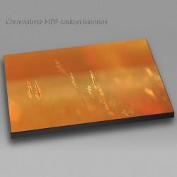 Kultaiset heinät - Chromaluxe taulu