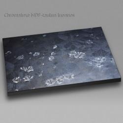 Jääkukat ikkunassa III - Chromaluxe taulu