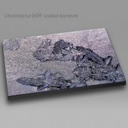 Printattu jää - Chromaluxe taulu