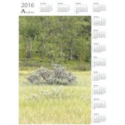 Bright bush - Year Calendar