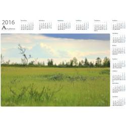 Niityn pieniä yksityiskohtia - Vuosikalenteri