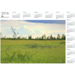 Small things on meadow - Year Calendar