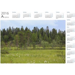 Treeline on svamp - Year Calendar