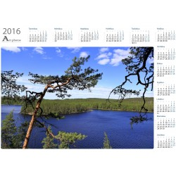 View behind the branches - Year Calendar