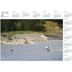 Takaa-ajo - Vuosikalenteri