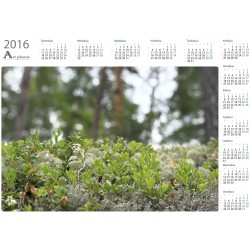 Forest miniature - Year Calendar