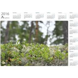 Metsän pienoismalli - Vuosikalenteri
