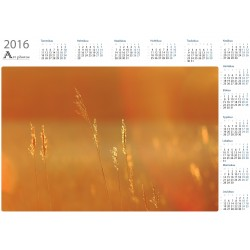 Golden hays - Year Calendar