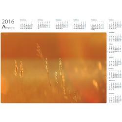 Golden hays - Year Calendar