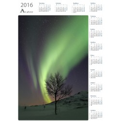 Revontulikoivu - Vuosikalenteri
