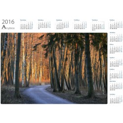 Evening path - Year Calendar