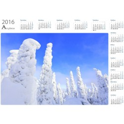 Crown snow forest - Year...