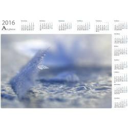 Divergence - Year Calendar