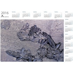 Printed ice - Year Calendar