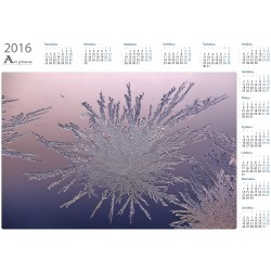 Spreading ice - Year Calendar