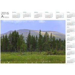 Cottongrass meadow - Year Calendar