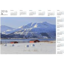 Roll hays - Year Calendar