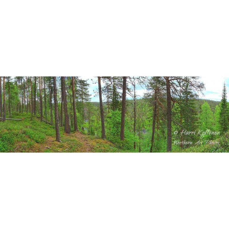 Metsä ja joki - Tapetti