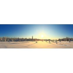 Matalan auringon varjot II - HD - Tapetti