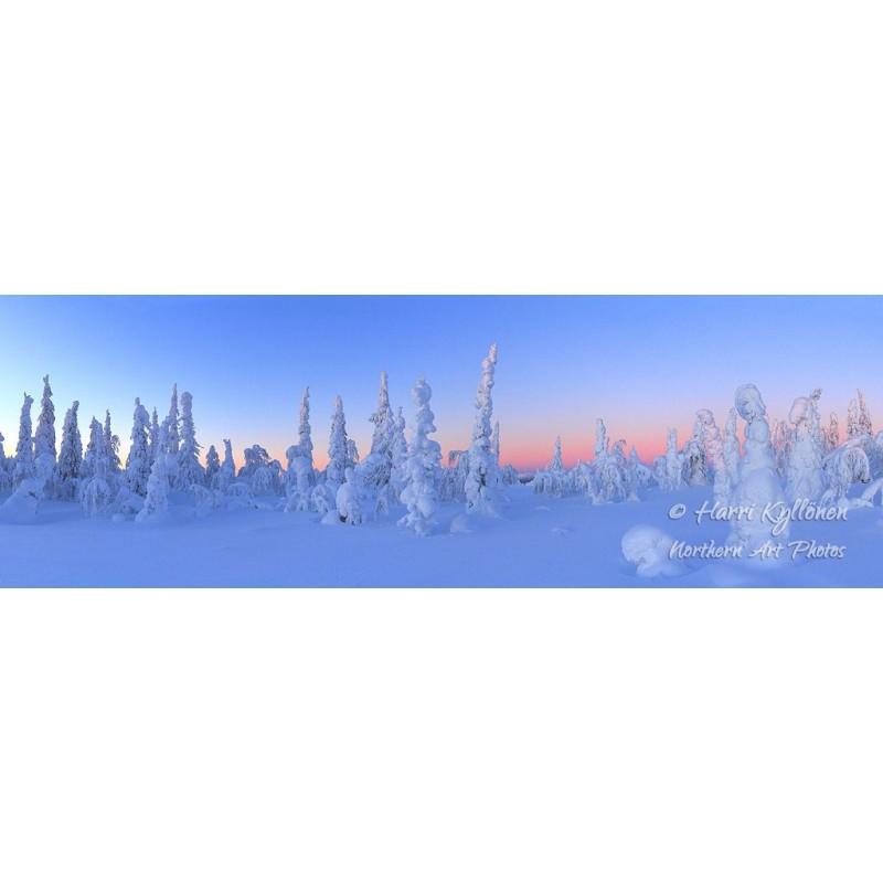 Talvi-ihmemaa - HD - Tapetti