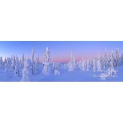 Talvi-ihmemaa II - HD - Tapetti