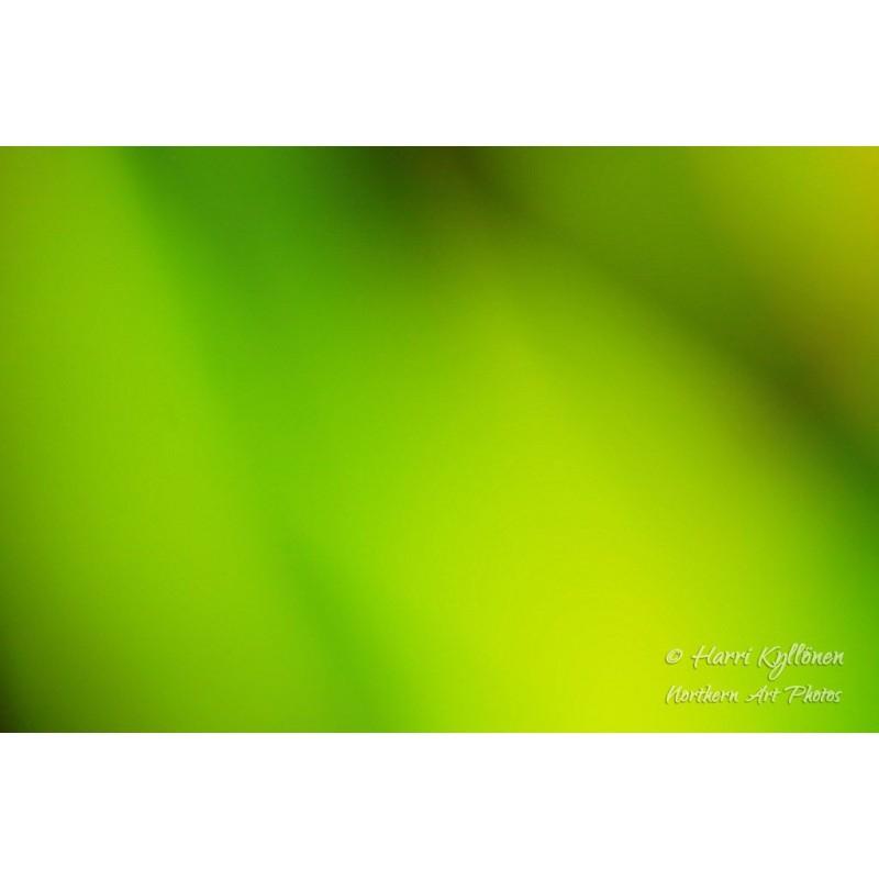 Vihreän sävyt - Tapetti