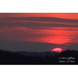 Putoava aurinko II - Tapetti