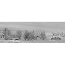 Countryside at winter b&w -...