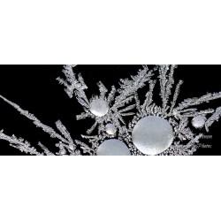 Kristallipesä - Juliste