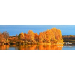 Fall colors at river - Poster
