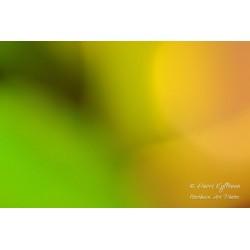 Värisävyt - Juliste