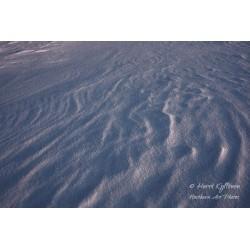 Lumen pinta - Juliste