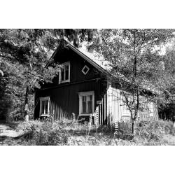 Vanha talo II - Juliste