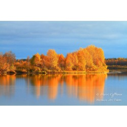 Fall colors at river II -...