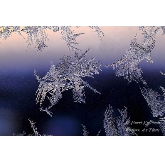 Delicate ice formations -...
