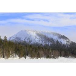 Konttainen talvella - Juliste