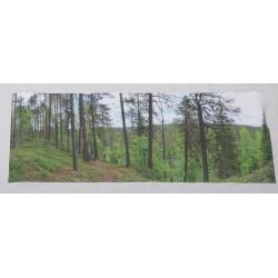 Karhunkierroksen metsä - 105,6x38,7cm juliste