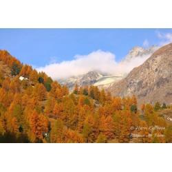 Vuoriston ruskaa II - Palapeli