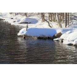 Laituri talvella - Palapeli